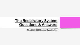 The-Respiratory-System-Exam-Questions---Answers.pptx