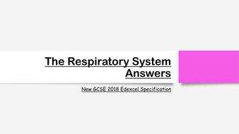 The-Respiratory-System-Exam-Answers.pdf