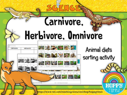 animal diets science activity teaching resources. Black Bedroom Furniture Sets. Home Design Ideas