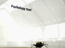 Personality-Test.pptx