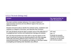 The Brain (Biology Only) - New AQA Biology GCSE | Teaching ...