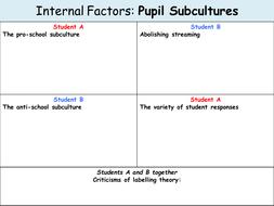 L6-Pupil-Subculture-Grid.pptx