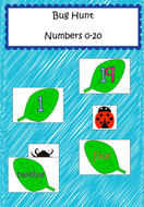 Numbers to 20 - Bug Hunt