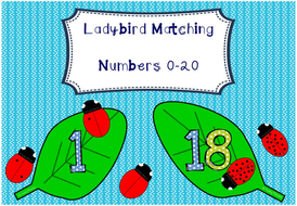 Numbers 0 to 20 - Ladybird Matching