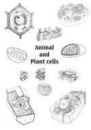 AQA Unit B1.2 Animal and Plant cells workbook NEW SPEC by