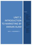 unit-3-assignment-2-business-FINAL-(1).docx