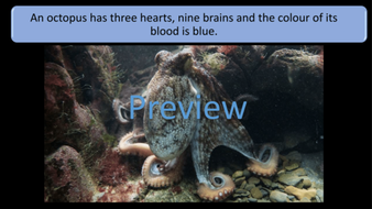 preview-images-amazing-biology-facts-17.png