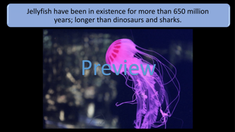 preview-images-amazing-biology-facts-16.png
