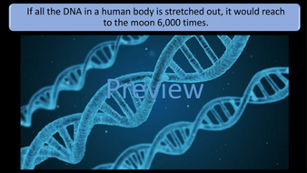 preview-images-amazing-biology-facts-05.png
