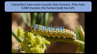 preview-images-amazing-biology-facts-15.png