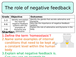 NEW AQA GCSE Trilogy (2016) Biology - The role of negative feedback