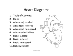 Heart anatomy diagrams and quiz by scienceisland teaching 2 heart diagramspdf ccuart Choice Image