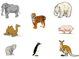 Hot-COld-Animals-sheet.pptx