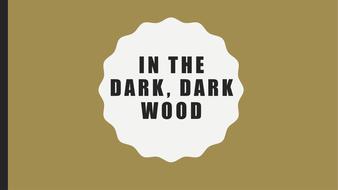 In-the-Dark--Dark-Wood-PPT.pptx