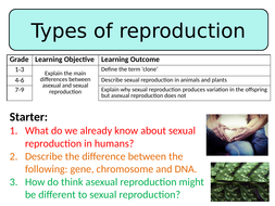 NEW AQA GCSE Trilogy (2016) Biology - Types of reproduction