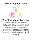 The-Triangle-of-Care.docx