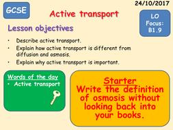 B1.9-Active-Transport.pptx