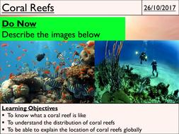 23---Coral-Reefs.pptx