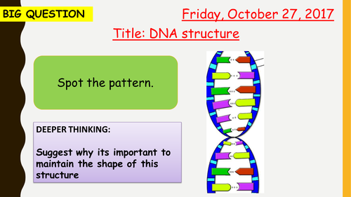 AQA new specification-DNA structure and protein synthesis-B13.5