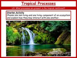 14.-Tropical-Processes.pptx