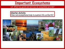 17.-Important-Ecosystems.pptx