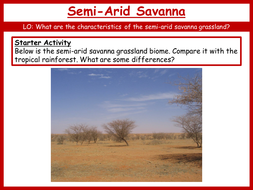 15.-Semi-Arid-Savanna.pptx