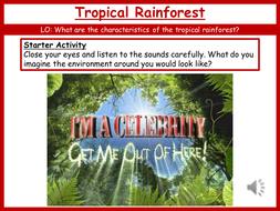 13.-Tropical-Rainforest.pptx