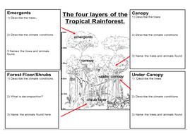 13.-Layer-worksheet.docx