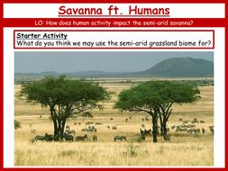 21.-Savanna-ft.-Humans.pptx