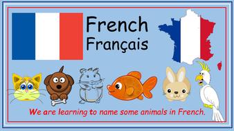 French-presentation-1.pptx