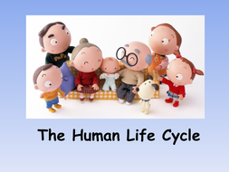 Powerpoint---The-Human-Life-Cycle.ppt