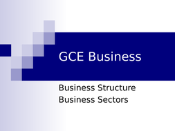 Business Structure /Sector