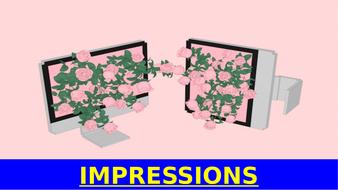 STEVE-IMPRESSIONS-(2).pptx