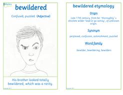 Flashcard-bewildered.pdf