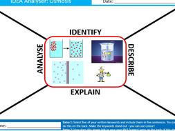 Osmosis IDEA Analyser Science Biology Starter Keywords Activity KS3 GCSE Cover Homework