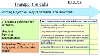 Diffusion-in-cells-Active-Transport-Osmosis1.pptx