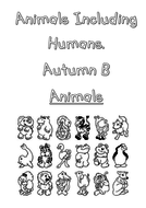 autumn-b-front-cover.pdf