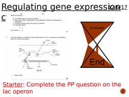 Regulating-gene-expression-2.pptx