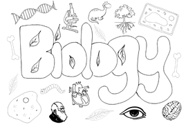 Biology science poster colouring Christmas activity end of ...