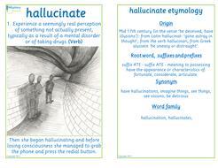 Flashcard-hallucinate.pdf