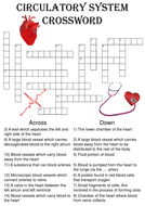 Circulation-Crossword.pdf