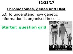 Genes--chromosomes--DNA-TES.pptx