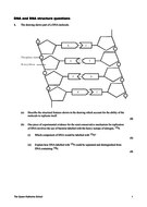 DNA-RNA-Structure-Questions.doc
