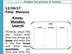 L2-1-Meiosis-PowerPoint.pptx