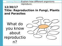 L3-1-Reproduction-in-Fungi--Plants-and-Parasites-PowerPoint.pptx