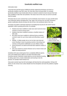 WS-GE-Crops-resource.docx
