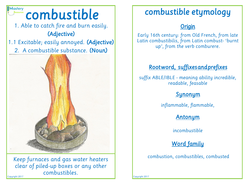 Flashcard-combustible.pdf