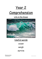 Year-2-comprehension-lower-ability---ocean-animals.docx