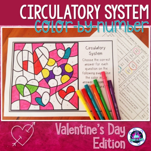 Valentine's Day Colour-by-Number Science Activity: Circulatory System