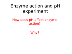 ph enzyme experiment